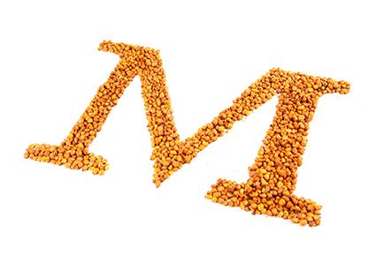 Maiz crujiente